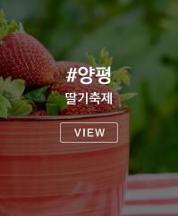 양평 딸기축제